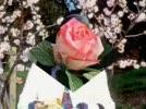 XemvideoclipHappyMothersDayVideohpdnCliphotBaamboo.com.flv