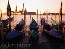 0.Venice_-_GalleryPlayer.jpg