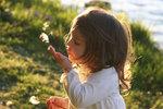 Uoc_mo_cua_Rachel_PhotographersMicrosoft_2009.jpg