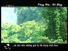 Copy_of_200792013158_phong_nha_ke_bang.flv
