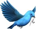 Birdindigobuntingwithribbon.png
