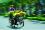 Xuan_ve__nsna_Ngo_Viet_Ngoc.jpg