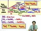 Bai_tap_dang_CO2_pu_voi_CaOH2_phan_2.flv