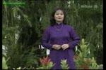 Tieng_Huong_Binh.flv