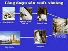 Cac_cong_doan_sx_xi_mang.jpg