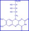 VitaminB22D.png