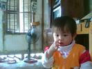 Snapshot_20091108_4.jpg