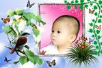 Tien_chim.jpg