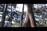Video_21.flv