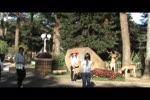 Video_3flv.flv