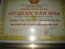 CQVH_cap_tinh_2009.jpg