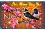 CHUC_MUNG_NAM_MOI_BCS_2xoaal320.swf