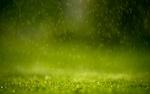 Raining_by_ipapun.jpg