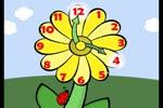 Flower_timeflv1.flv