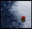 1303222725_anhdepblog_com_rain40.jpg