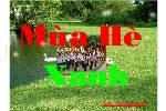 Mua_He__Xanh.swf