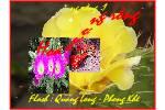 Hoa_Xuong_Rong1__Thanh_Thanh.swf