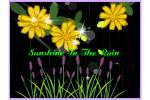 Sunshine_In_The_Rain7.swf