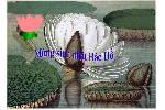 Mung_sinh_nhat_bac_ho_moii1.swf