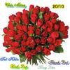 Eqn1298864500_copy_copy_500_01.jpg