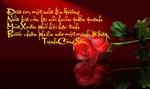 264088_109226802564792_1976742543_n.jpg