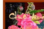 Lien_khuc_happy_new_yea_va_phut_giao_thua_lang_le.swf