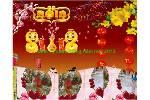 DINH_TY_CHUC_MUNG_NAM_MOI_2013.swf