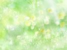 Hinh_nen2.jpg
