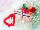 Rose_135.jpg