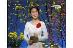 Moi_hong_mua_xuan.swf