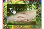 TINH_CAY_VA_DAT_TAM_DOAN.swf