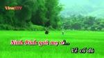 Ninh_Binh_que_me.flv