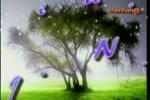 Videoplayback4.flv