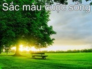 Ngay_moi.jpg