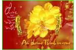 Ngay_xuan_long_phung_sum_vay.swf