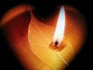 Candlear1.jpg