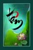 Ch_Tam_hoa_sen__40x60.jpg
