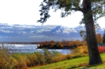 Windy_autumn_on_the_columbia_river.png