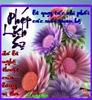 Thuha10_500_02.jpg