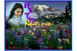 Xuanson062000__hoa_tim_nguoi.swf