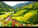 SaPa_Thanh_Pho_Trong_Suong__Le_Tien_Ngoc.flv