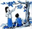 Tranh_053.jpg