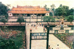 DIEN_THAI_HOA.jpg