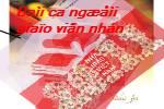 Bai_ca_nguoi_giao_vien_nhan_dan.swf