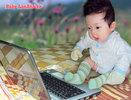 BabyLanAnh.jpg