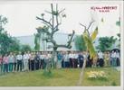 ONG_NOI_HOP_CO_QUAN_HAO_1062012.jpg