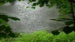 Video_Background_176_Rainy_Lake__YouTube.flv