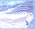 DL4_Bai_1_h13.jpg