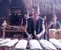 37Dan_nhac_dan_toc_Tay_Nguyen.flv
