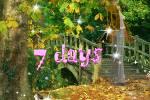 7_days.swf